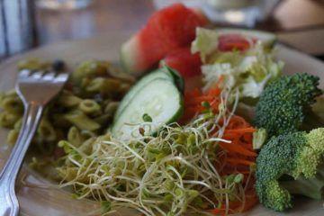 Un piatto di verdure di chi segue una dieta vegana