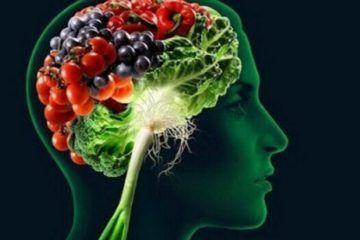 Il cervello e gli alimenti