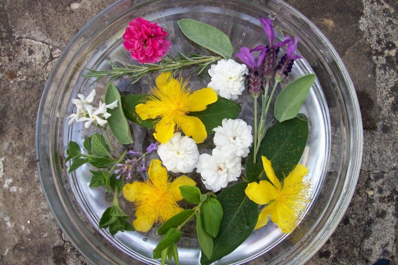 fiori-San-Giovanni