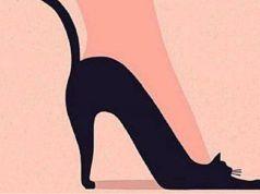 Scarpa o gatto